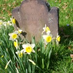 Finding Life at a Funeral